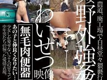 鬼畜ロリコン二人組が、近所を歩く女子小学生を捕まえて野外強姦する。泣き叫ぶ少女達を容赦なく突きまくり、中出しまでする鬼畜ぶり。貧乳パイパンJSを野外レイプする企画アダルトビデオ。無料JSエロ動画。